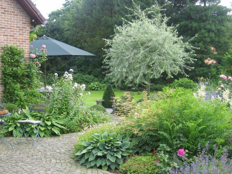 De tuin van de fam vandecruys frederix - Model van het terras ...