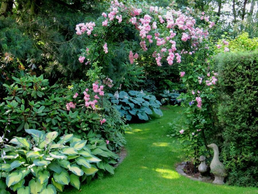 De tuin van de fam vandecruys frederix - Deco van de tuin ...
